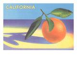 Single Orange with Blue Shadow, Calfornia Prints