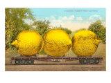 Carload of Mammoth Lemons from California Print