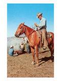 Cowboys Branding Calves Posters