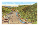 Hot Springs, Arkansas Poster