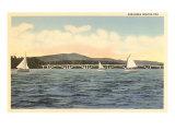 Sail Boats in Arkansas Lake Prints