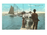 Fishing at Coden, Mobile, Alabama Prints