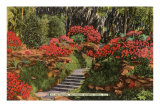 Bellingrath Gardens, Mobile, Alabama Posters