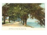Shell Road, Mobile, Alabama Prints