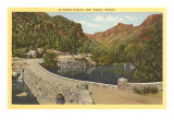 Sabino Canyon, Tucson, Arizona Prints