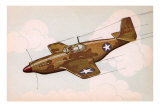 Mustang Fighter Plane Prints