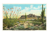 Superstition Mountain, Arizona Prints