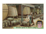 Wine Storage, Illustration Poster