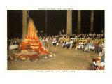 Evening Campfire, Sequoia, California Prints