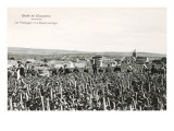 Grape Harvesters, France, Moet et Chandon Print