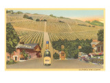 California Wine Country Prints