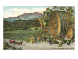 Vineyards at San Luis Obispo, California Print