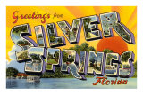 Greetings from Silver Springs, Florida Prints