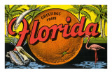 Greetings from Florida Posters