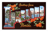Greetings from Lakeland, Florida Photo