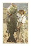 Huge Black Sea Bass, Catalina, California Prints