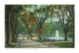 Frog Pond, Common, Boston, Massachusetts Print