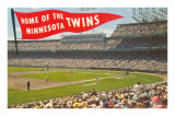 Home of the Minnesota Twins Posters