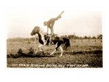 Woman Trick Rider Prints