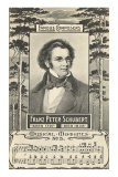 Franz Schubert and Music Photo