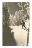 Cross-Country Skier in Profile Prints