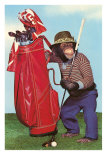 Chimp with Golf Bag Photo