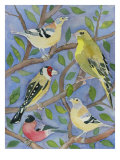 Finches Giclee Print by Mary Stubberfield