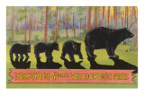 Greetings from Yellowstone National Park, Bears Posters