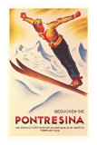 Ski Jumping Poster Posters