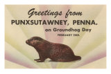 Groundhog, Greetings from Punxsutawney, Pennsylvania Poster