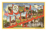 Greetings from Ft. Jackson, South Carolina Poster