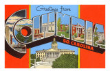 Greetings from Columbia, South Carolina Posters