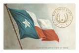 State Flag of Texas Poster