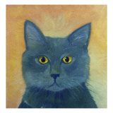 Russian Blue Giclee Print by Mary Stubberfield