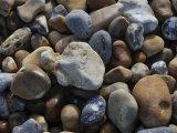 Pebbles Photographic Print by Paul Tolhurst
