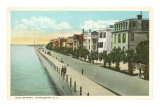 East Battery, Charleston, South Carolina Posters