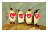 Four Emperor Penguins, LOVE Print