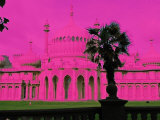 The Royal Pink Pavilion Brighton Photographic Print by Paul Tolhurst
