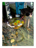 Martini on the Marble Table Giclee Print by Steve Ash