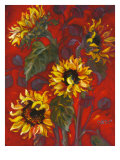Sunflowers I Posters av Shari White