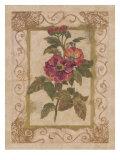 Rose De Provins Prints by Shari White