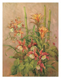 Exotics Collection I Giclee Print by Barbara Mock