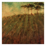 Vineyard Hill Giclee Print by Art Fronckowiak
