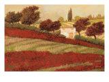 Apapaveri Toscana I Prints by Guido Borelli
