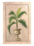 Key West Palm l Premium Giclee Print by  Welby