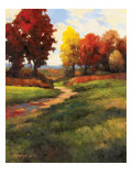 Late Noon Path II Giclee Print by Kanayo Ede
