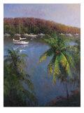 Caribbean Lagoon Prints by Karen Dupré
