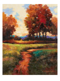 Late Noon Path I Giclee Print by Kanayo Ede