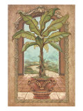 Classical Banana Tree Premium Giclee Print by Janet Kruskamp