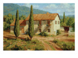 Tuscan Cypress Premium Giclee Print by Roger Williams